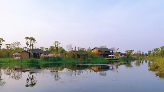 2.天宸原著-龙湖城市排屋居于生态大境,繁华繁花尽揽533.png