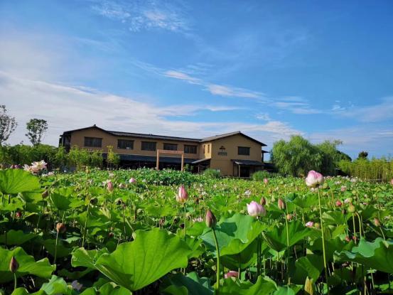 2.蔚澜香缇-一半风景,一半繁华,在城市公园住区与理想生活欣然相遇1167.png